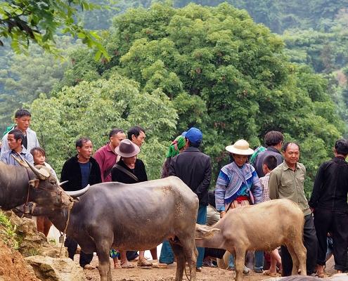 Marché ethnique de Bac Ha