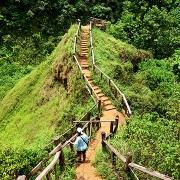 Le plateau des bolovens au Laos