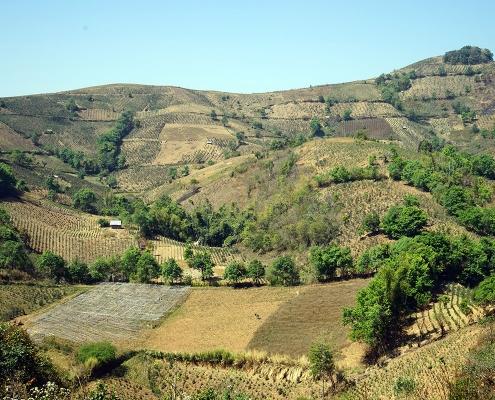 La campagne de Pindaya