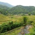 Rizière à Mai Chau