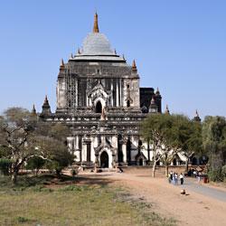 Temple That Bin Nyu Paya dans la plaine de Bagan au Myanmar