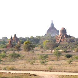 Vue sur la plaine de Bagan et ses centaines de temples