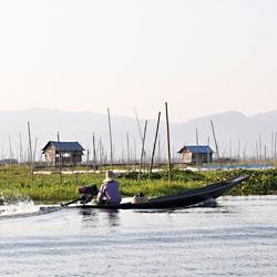 Les jardins flottants du lac Inle au Myanmar