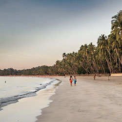Plage de Ngapali bordée de cocotiers