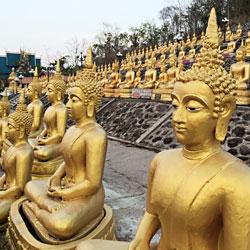 Statues de Bouddha au temple de Wat Phou