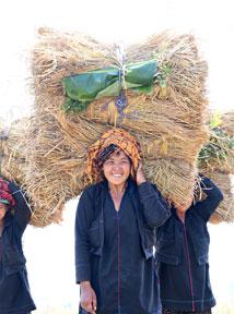Découvrir toutes nos idées de séjours en Birmanie