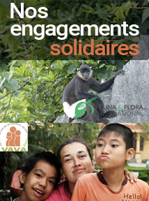 Les engagements solidaires de Carnets d'Asie