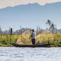 La pêche sur le lac d'Inlé