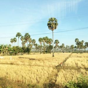 Découvrir Kampong Chhnang avec Carnets d'Asie