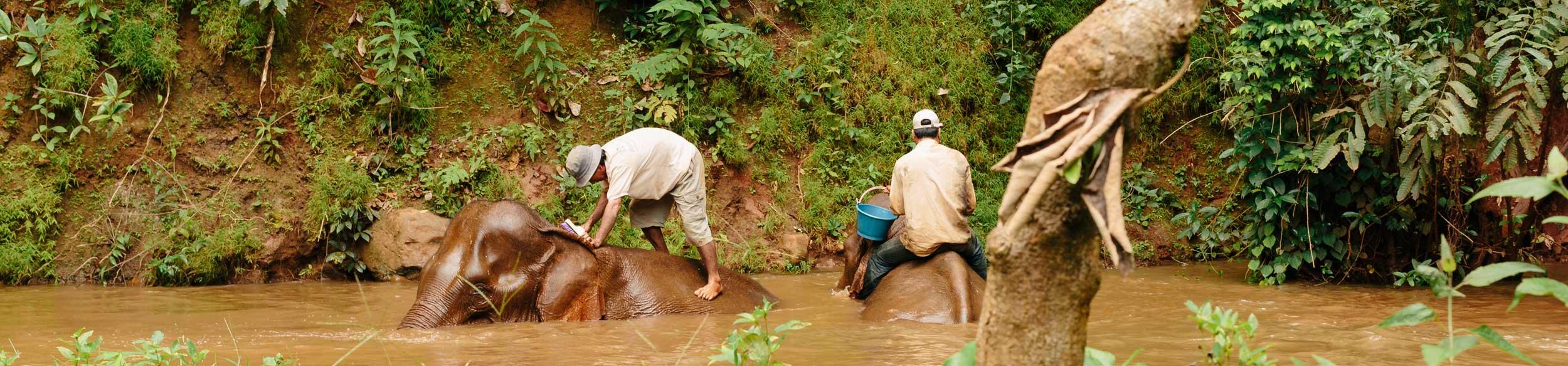 Mondulkiri au Cambodge avec Carnets d'Asie