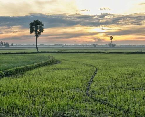 Découvrir Chau Doc avec Carnets d'Asie