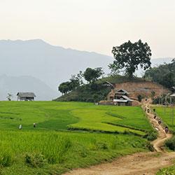 Découvrir Moc Chau lors d'un voyage à moto avec Carnets d'Asie