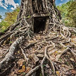 Voyager à Kampong Thom avec Carnets d'Asie