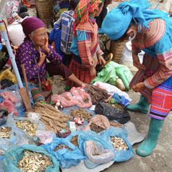 étales d'un marché ethnique de la région de Bac Ha au nord Vietnam