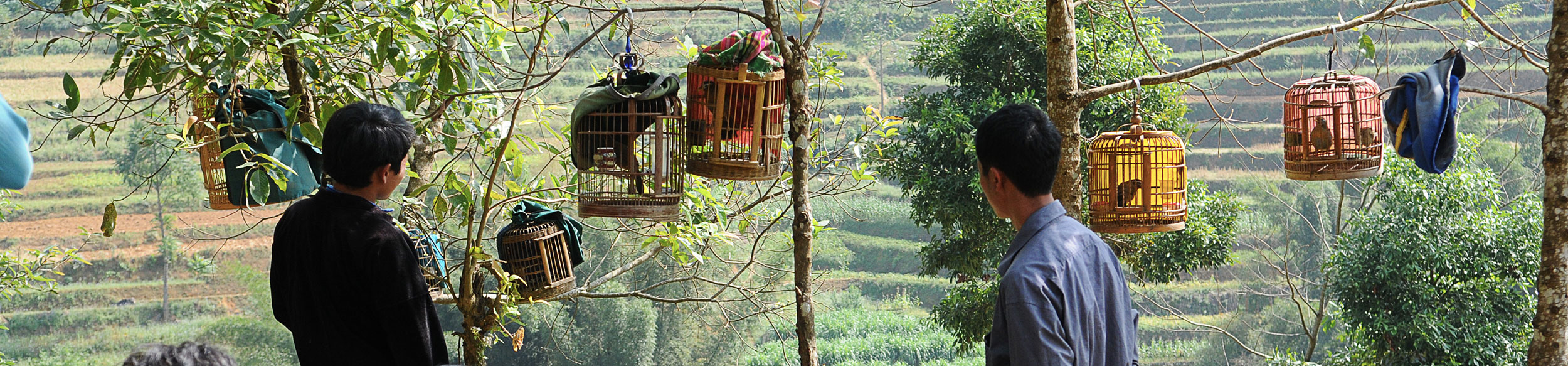 Marché aux oiseaux sur le marché de Can Cau au nord Vietnam