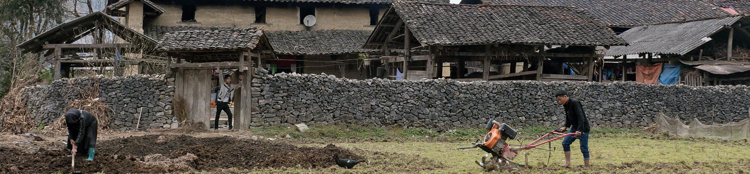 Ferme Hmong dans la région de Ha Giang au Vietnam