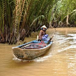 Barque à moteur dans la mangrove de Ben Tre