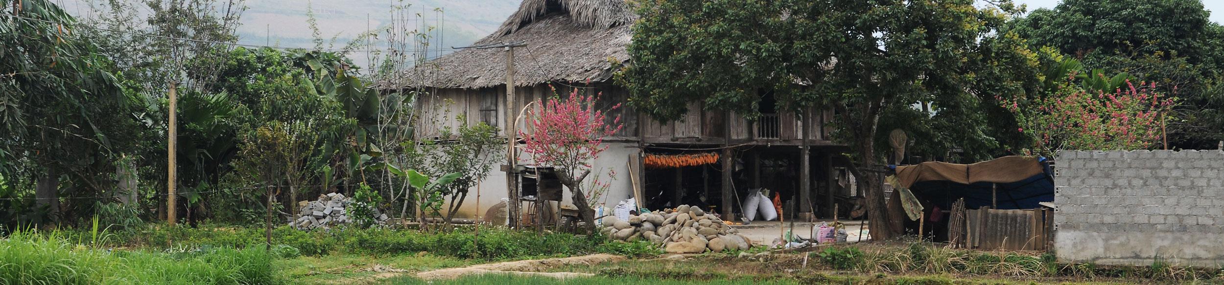 Maison de l'ethnie Thai dans la vallée de Nghia Lo au Vietnam