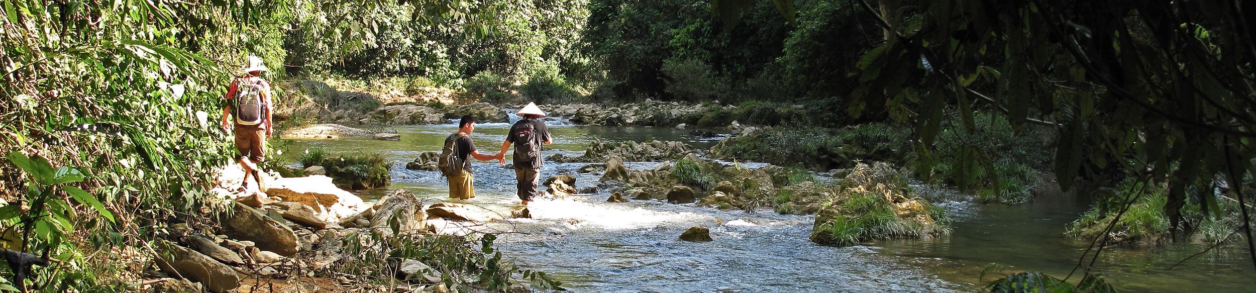 Trek dans la réserve de Ngoc Son Ngo Luong
