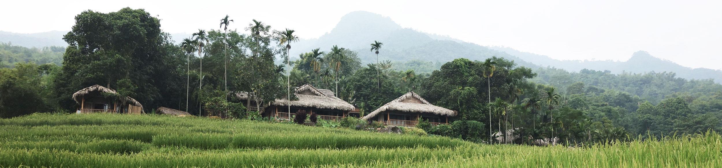 Bungalow dans la réserve de Pu Luong au Vietnam