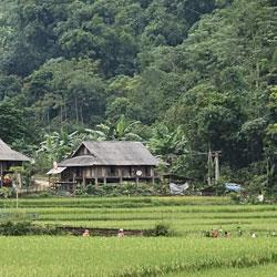 Village de Ban Kho Muong lors d'un trek dans la réserve de Pu Luong au Vietnam