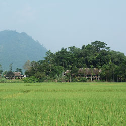 Village ethnique à Quang Bing au nord Vietnam
