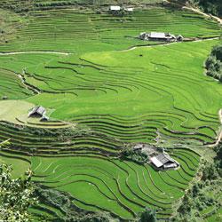 Les paysages à découvrir lors d'un voyage à Sapa en moto