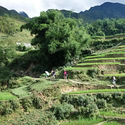 randonnée à Y Linh Ho à Sapa