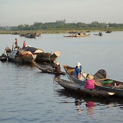 Ramassage du poisson le matin sur la lagune de Tam Giang