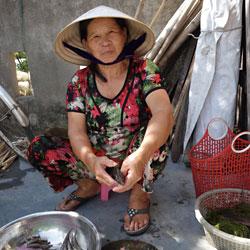 Préparation du repas chez l'habitant dans la lagune de Tam Giang