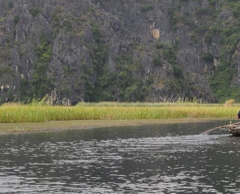 Balade en barque à rame dans la réserve de Van Long près de Ninh Binh
