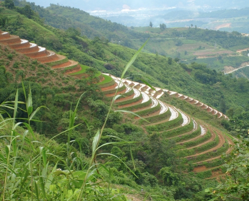 Rizières en terrasse dans les montagnes du nord Vietnam