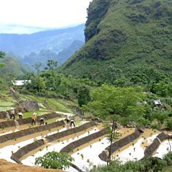 Route bucolique entre Lai Chau et Sapa