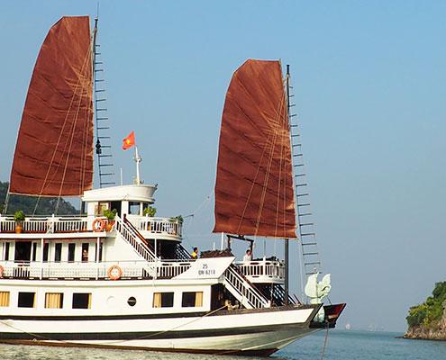 Une découverte de Bai Tu Long
