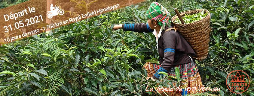 Le nord Vietnam à moto en petit groupe